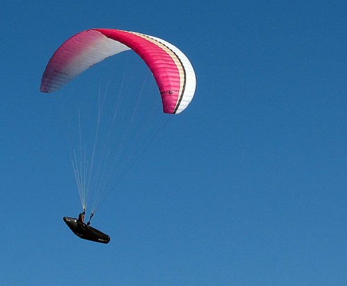 Icaro's new EN B paraglider, the Wildcat TE