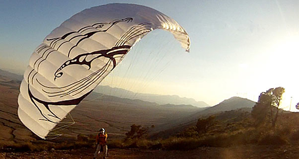 Adrenaline Fastbat mini wing