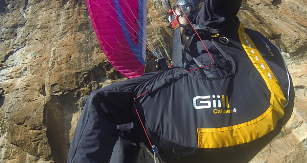 Sky Gii2 Alpha harness