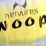 Nervures Swoop 2 mini wing