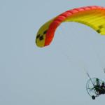 Apco Cruiser: intermediate PPC wing