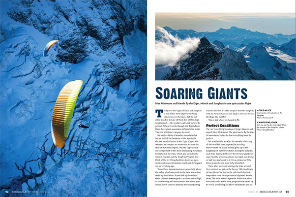 Soaring Giants: By Max Mittmann