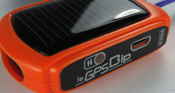 Stodeus solar-powered GPSBip now shipping
