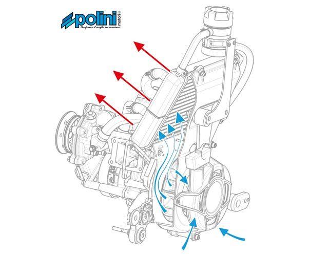 Polini Thor 80 diagram